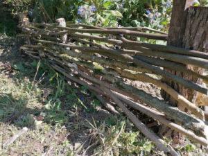 Plessis jardin